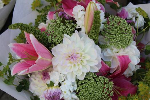 Blooms blossoms bouquets bright #74201