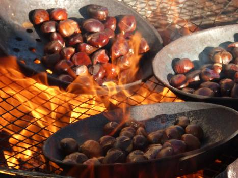 All saints castanada chestnuts fire Free Photo