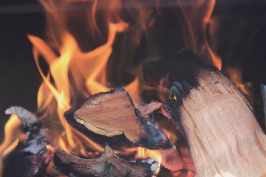 Campfire fire fireplace wood burning #74284