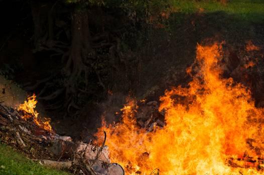 Blaze burn danger fire Free Photo