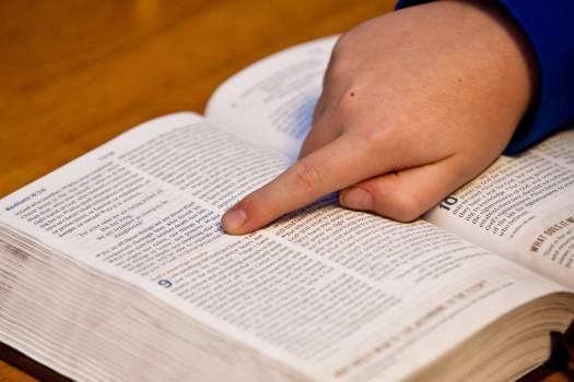 Bible bible study child christianity Free Photo