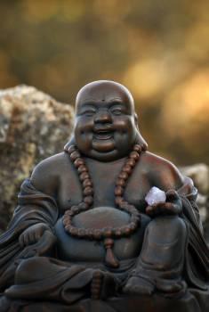 Aura barriga brightness buddha Free Photo