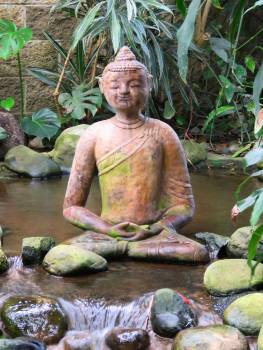 Buddhism meditate meditating peace Free Photo
