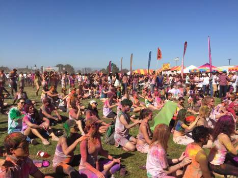 Celebrate dye festival festivity #76066