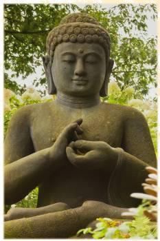 Asia believe buddha buddhism #76119