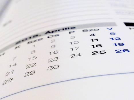 Book calendar paper #76171