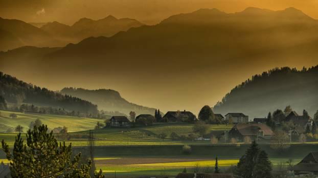 Afternoon autumn landscape mountains #76373