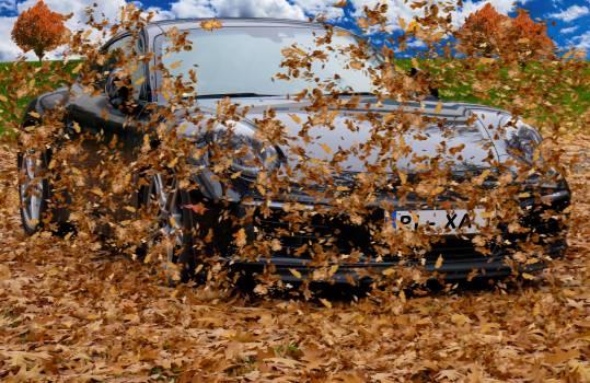 Auto autumn autumn colours autumn day #76441