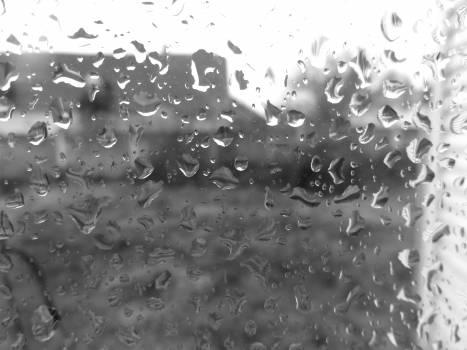 Drop drop of water rain raindrops Free Photo