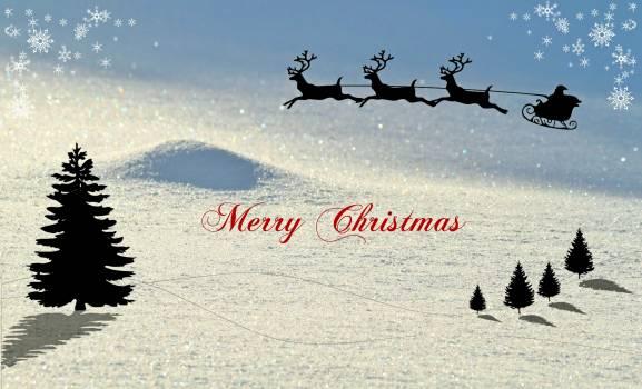 Christmas christmas card christmas decoration christmas greeting Free Photo