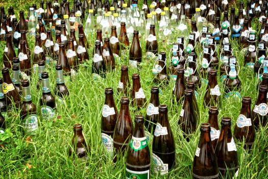 Alcohol alcoholic beer beer bottles #77859