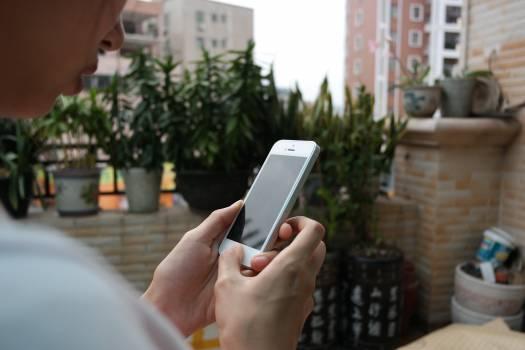 5s apple data honeycomb Free Photo