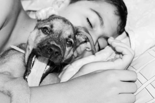Dog kid sleeping #79729