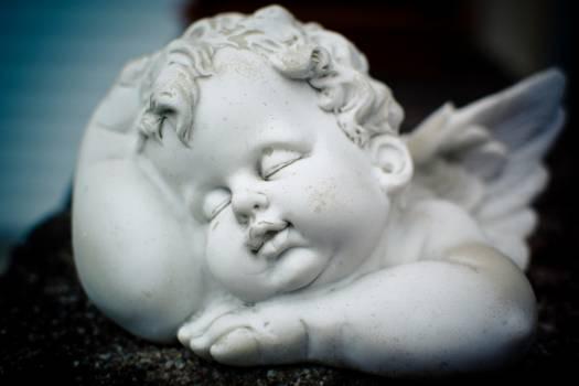 Angel angel figure bust cherub #79802