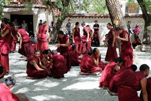 Monk students talk tibet Free Photo