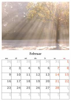 Calendar february february 2015 month Free Photo