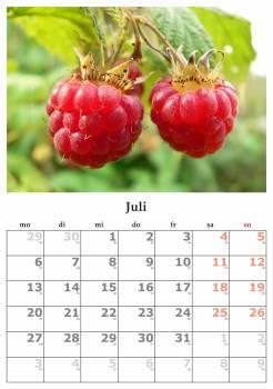 Calendar july july 2015 month #80968