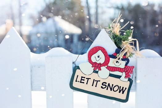 Card celebration christmas cold #81269