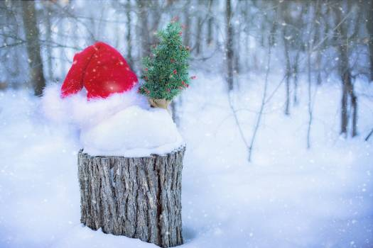 Christmas claus december decoration Free Photo