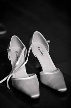 Black and white classic elegant fashion Free Photo