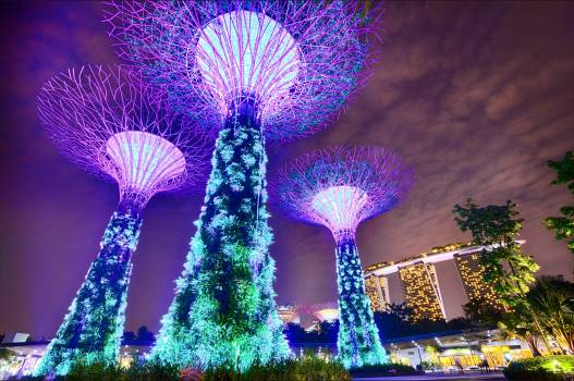 Architecture asia city life gardens by the bay Free Photo