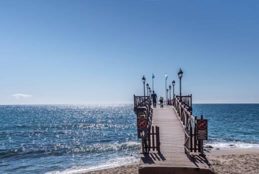 Beach blue coast dawn Free Photo
