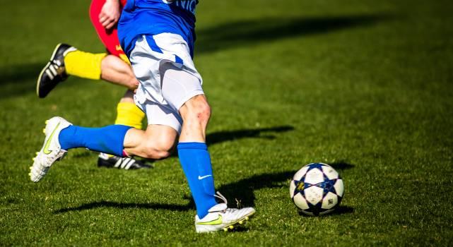 Adidas ball ball ball sports clip #81883