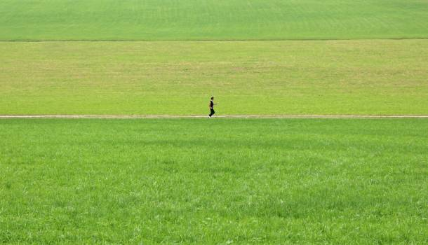 Alone away grass green Free Photo