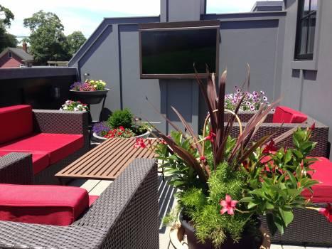 Balcony deck design outdoor #82841