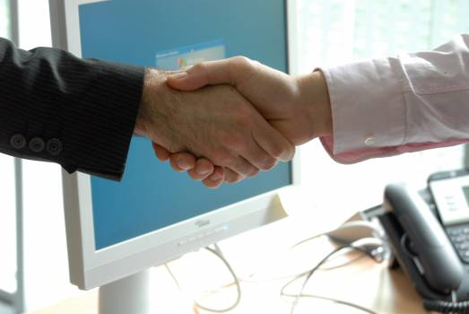 Business handshake professional #83026