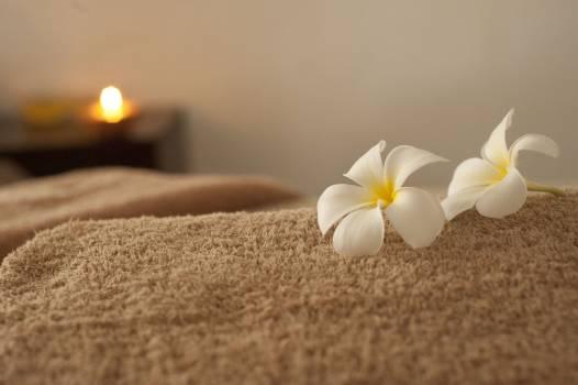 Massage relaxation spa #83050
