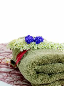 Beauty deco decoration flora #83135