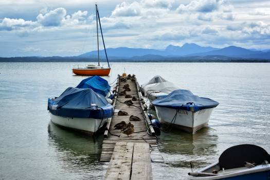 Abendstimmung boardwalk boats chiemsee Free Photo