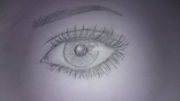 Creative design eye glance Free Photo
