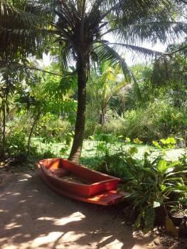 Canoe Boat Small boat #85314