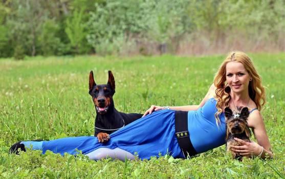 Beauty blonde woman doberman dogs #86366
