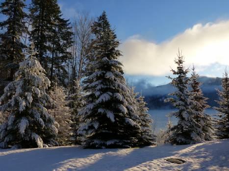 British columbia canada canim lake cold #86410