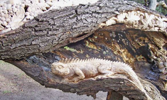 Carved wood iguana Free Photo