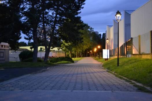 Night nikon park summer Free Photo