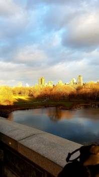 Sunset at central park Free Photo