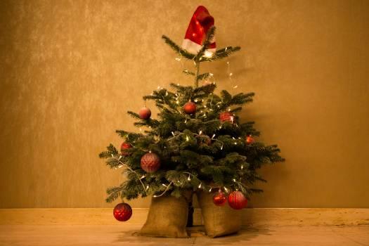 Christmas tree decoration Free Photo