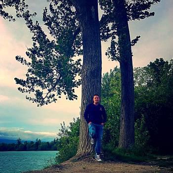 Lake tree Free Photo