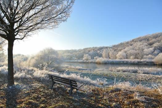 Bench daylight fog frost Free Photo