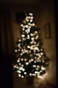 Bokhe christmas tree #90180
