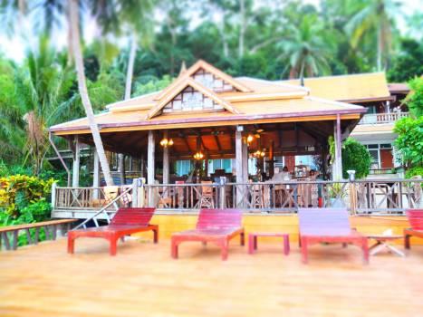 Exotic front getaway jungle retreat #91345