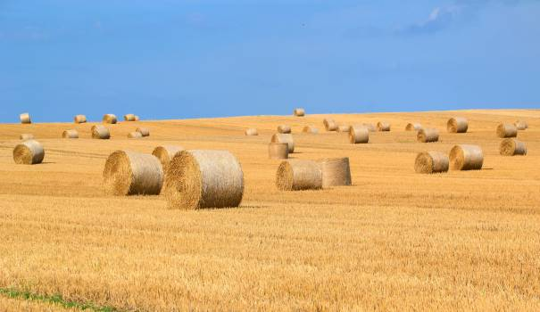 Agriculture arable bale countryside #91376