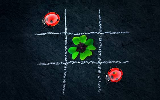 Abstract beetle emotion four leaf clover Free Photo
