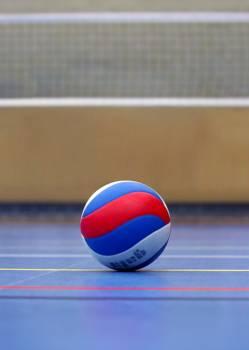 Ball ball sports championship competition Free Photo