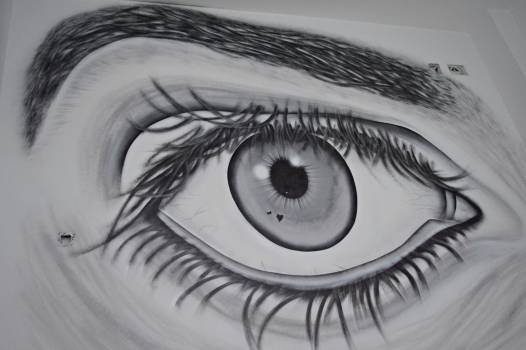 Eyebrow Eyesight Makeup Free Photo