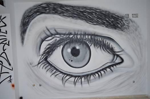 Eyebrow Eyesight Eye Free Photo